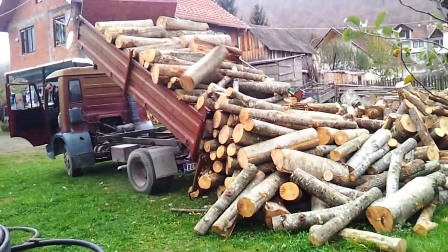 kosovska-policija-oduzela-srbinu-kamion-drva