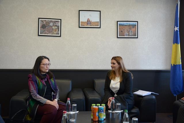 sastanak-ministarke-zivic-i-direktorke-usaid-a-na-kosovu