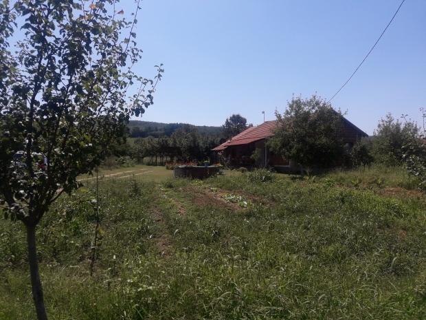 selo-saljinovica-jos-jedan-primer-odrzivog-povratka