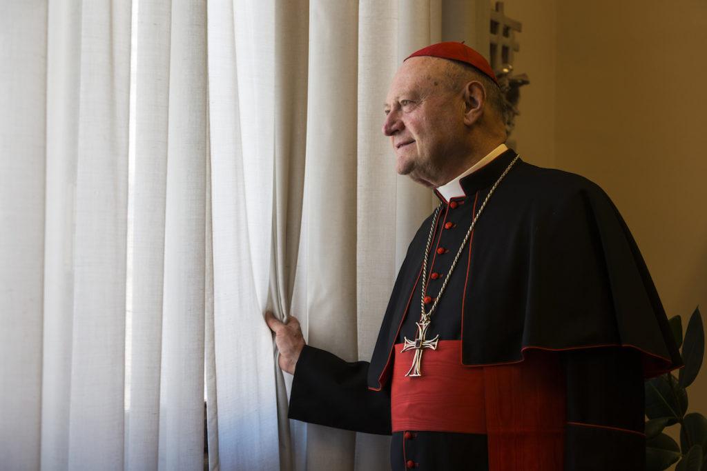 stigao-odgovor-kardinala-ravasija-povodom-mise-u-novom-brdu