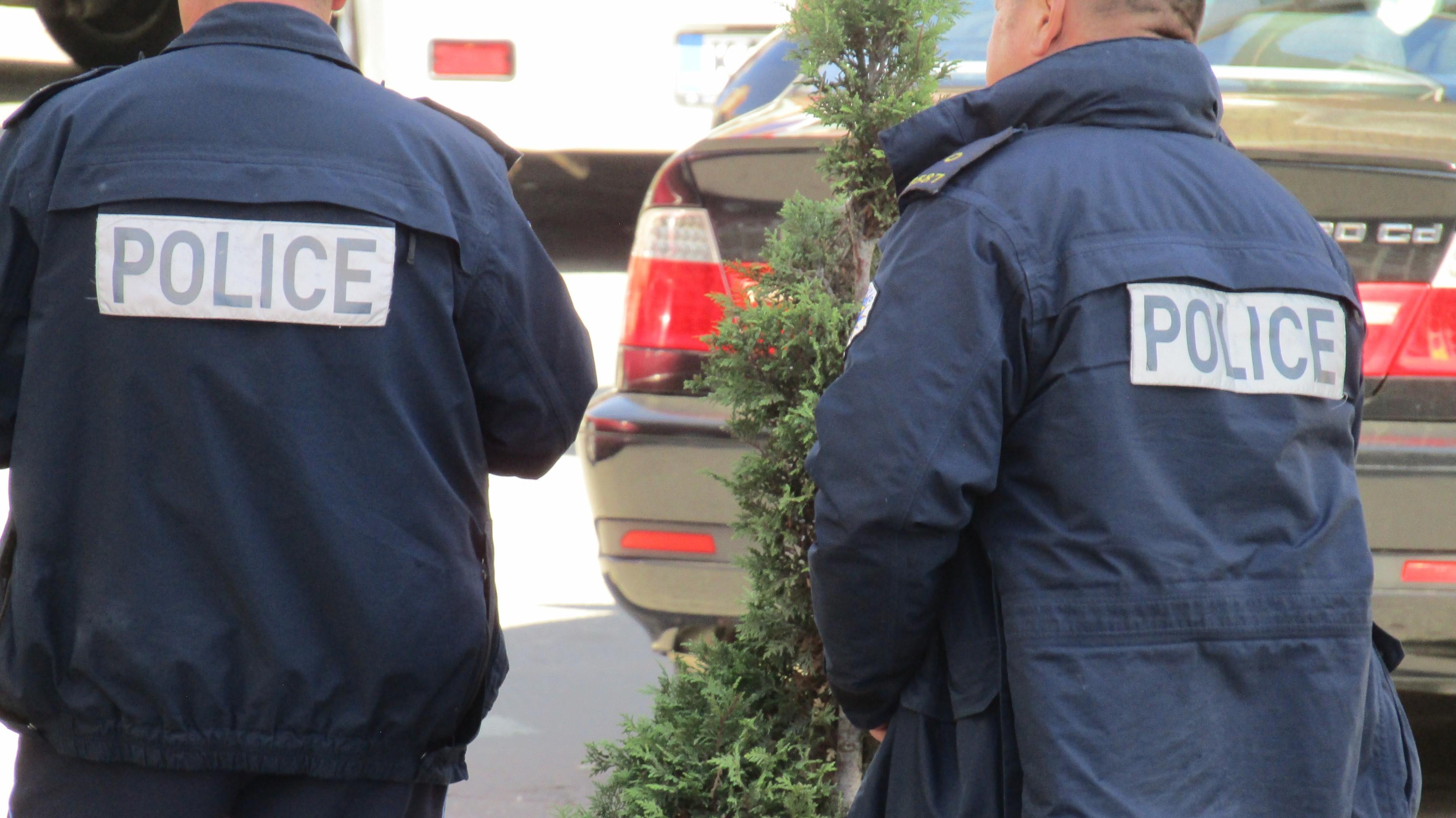 kosovska-policija-u-leposavicu-zaplenila-78-stabljika-za-koje-se-sumnja-da-je-kanabis