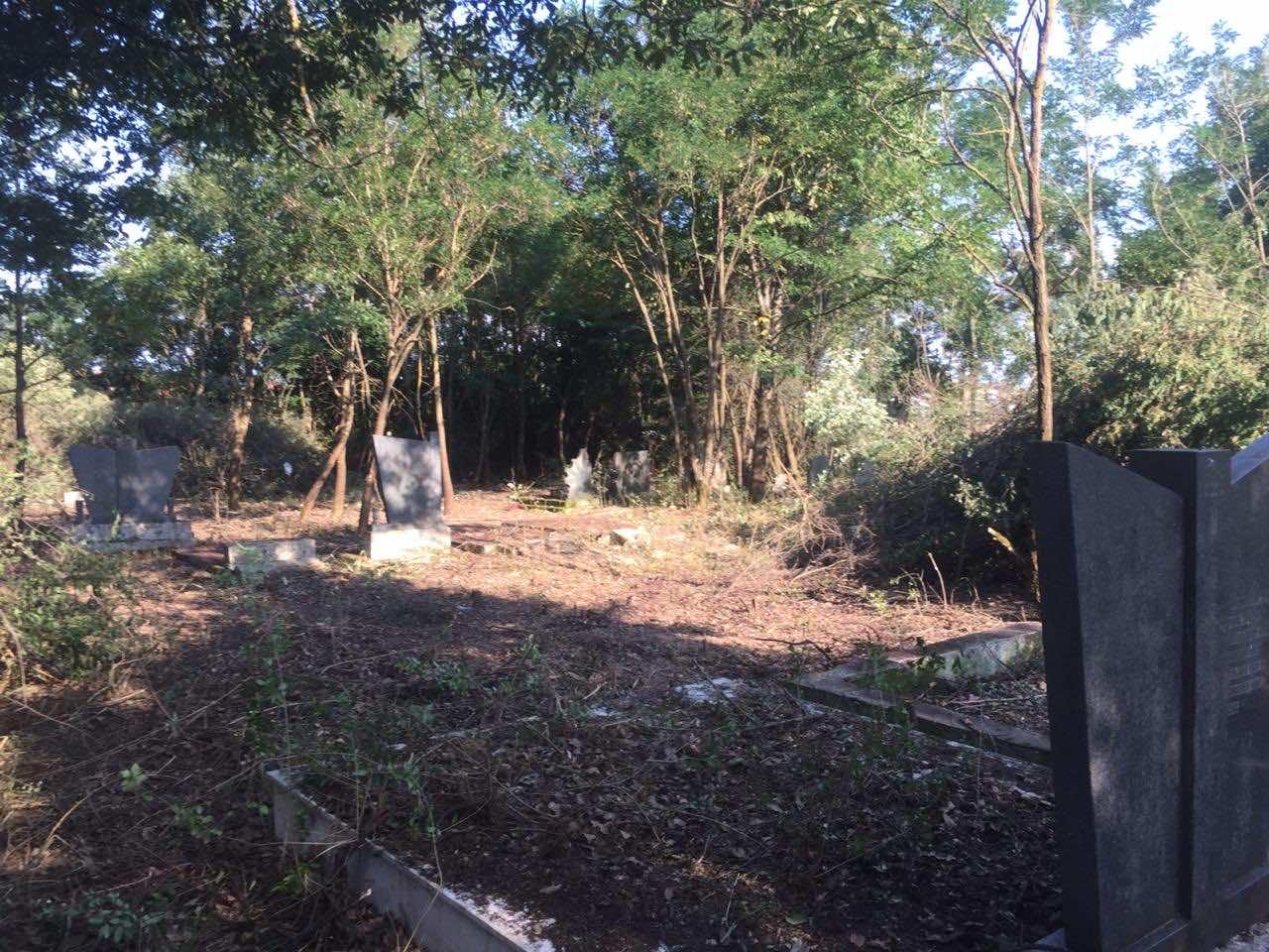 ocisceno-seosko-pravoslavno-groblje-u-petrovcu-kod-dakovice