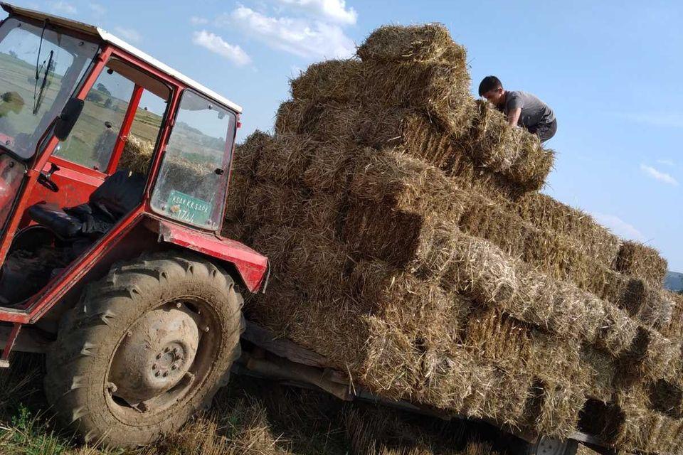 obezbedena-stocna-hrana-za-potrebe-farmi-u-okviru-organizacije-majka-devet-jugovica