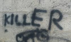 na-zidu-ograde-porodicne-kuce-pesica-u-klini-ispisana-poruka-ubica
